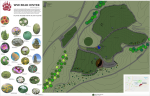 A schematic plan for a new Bear Center, including a list of plants and three separate outdoor enclosures.