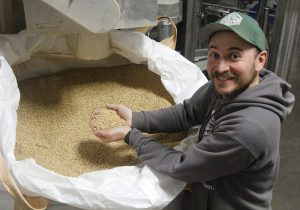 Joel Williamson with a handful of malt, which he is removing from a large plastic bag holding hundreds of pounds of malt grains.