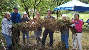 A line of seven workshop participants hold up a huge mass of invasive ivy.