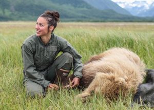 Joy Erlenbach kneels down next to a anesthetized grizzly bear in an open field with mountains in the background.