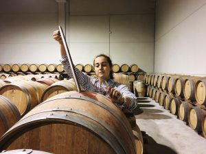 In a room of oak wine casks, Madeline Nichols pulls out a sample of wine from one barrel using a long tube.