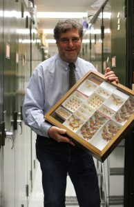 Rich Zack holds a specimen case of moths in an aisle of the MT James specimen collection.