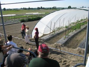 A tour group watches a speaker at a tunnel greenhouse of tomato plants.