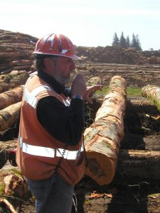 Tour leader in hardhat speaking in front of a stack of logs.