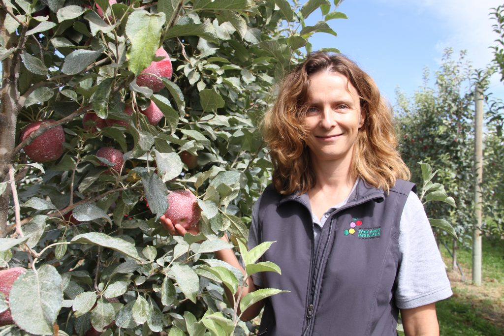 Hanrahan stands next to an apple tree