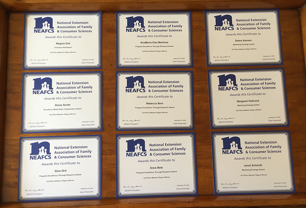 A photo showing a square of nine different award certificates.