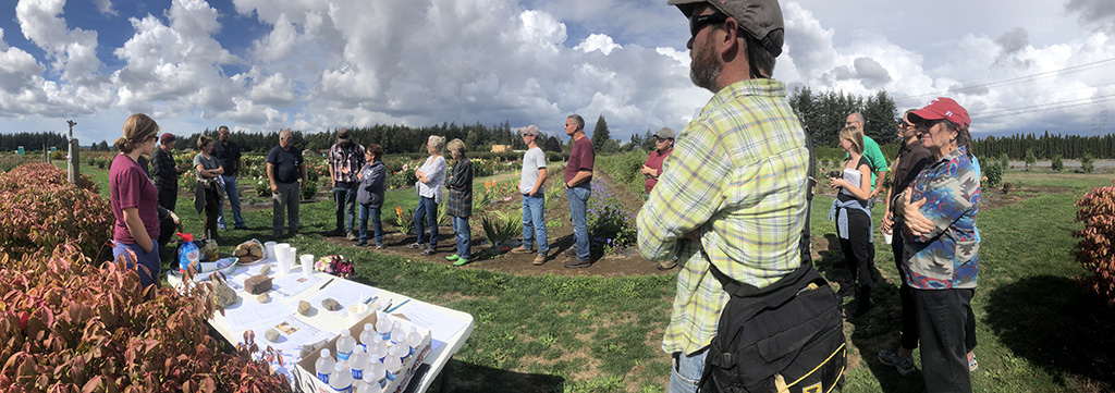 A line of growers and researchers take in a talk at an outdoor field day.