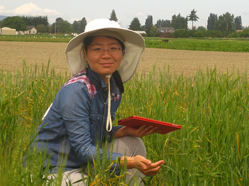 Liu, in white hat and with notebook, inspecting plants in a green field.