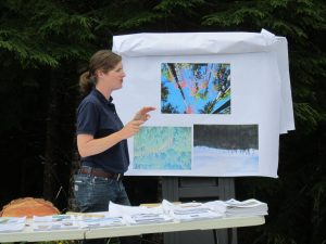 A speaker talks about forest practices in front of a display showing forest trees.