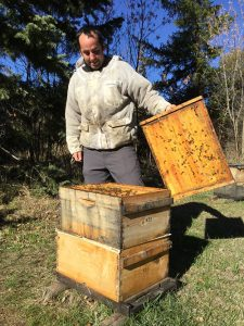 A beekeeper lifts the lid of a wooden hive.