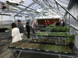 Plants grow on trays as people walk around inside the building with glass walls and roof.