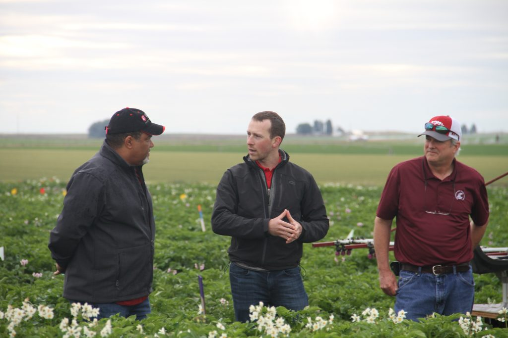 Wright, Ellis and Knowles standing in a potato field, with Ellis speaking.