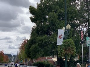 A banner with the WSU logo hangs from a lampost.