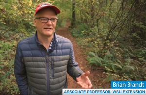 Brian Brandt standing in a forest