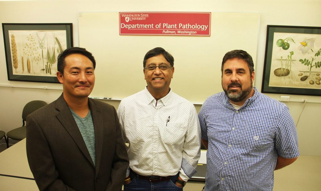 Trio of researchers stand in meeting room with WSU Plant Pathology banner in background.