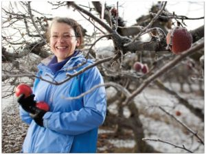 Evans stands by a fruit tree holding apples during winter.