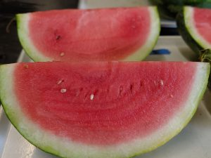 A bright pink slice of watermelon with a bright green rind.