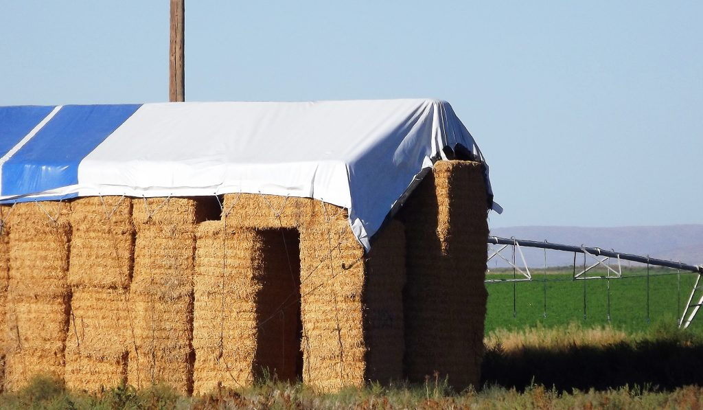 Covered stack of bales of alfalfa in the field