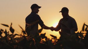 Two farmers talk on the field, then shake hands.