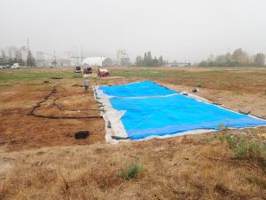 A blue tarp covers a small part of a large grassy area. A dark brown section of grass is right next to the tarp. In the background is a large tank, with hoses running from the tank to the tarp.