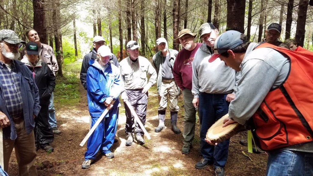 Course participants look on in an in-woods visit, as an instructor shows a trunk section.