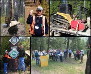 Collage of Forestry events