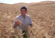 William Pan in wheat field