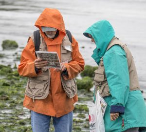 A man in an orange rain jacket and woman in a blue rain jacket looks at a laminated paper with pictures of sea life on it. A beach and open water is in the background.