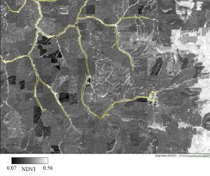 Black and white satellite image, with streams highlighted in yellow.