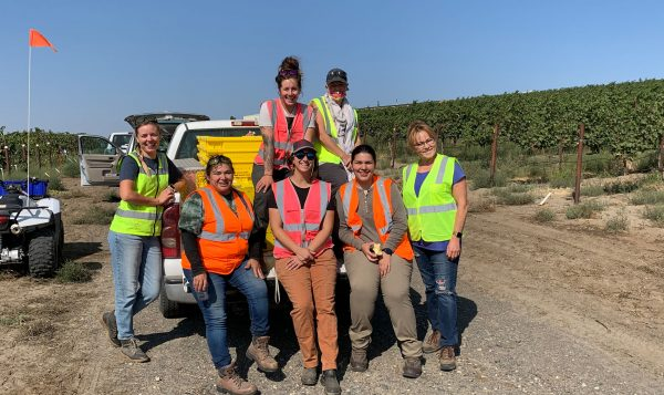 A group of students in orange safety vests pose on a white pickup with stacks of grapes.