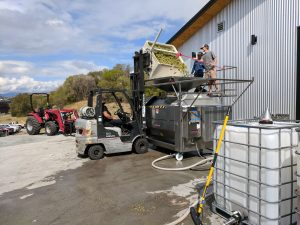 Two men load grapes into a vat near a forklift. One is driving the forklift.