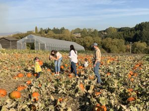 A family stands in a pumpkin patch looking at pumpkins.